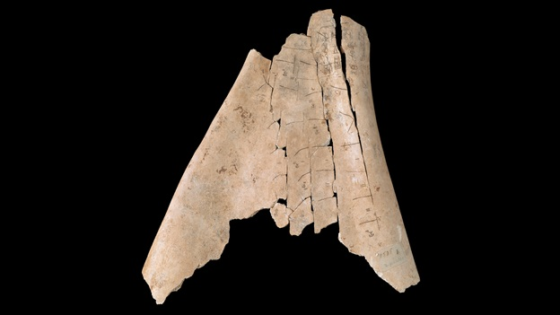 Shang dynasty oracle bone with Chinese writing (Or.7694/1535) from the collection of the British Library, digitized in the China-UK Exchange project